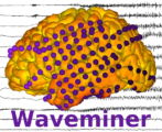 Waveminer Logo