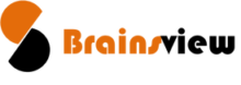 BrainsView Logo
